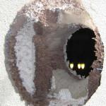 Installation Kaminofen im Fertigteilhaus